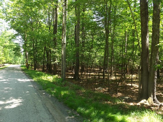 Raw Land - Lakeville, PA (photo 4)