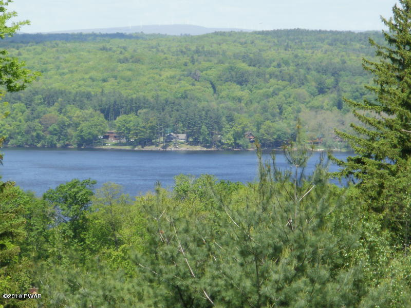 Approved Lot,Raw Land - Paupack, PA (photo 1)