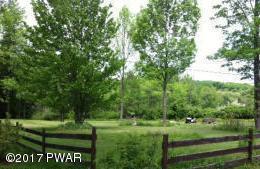 Raw Land - Honesdale, PA (photo 1)