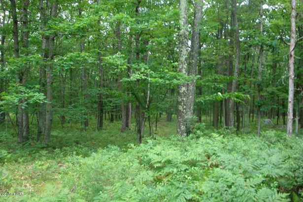 Raw Land - Tafton, PA (photo 1)