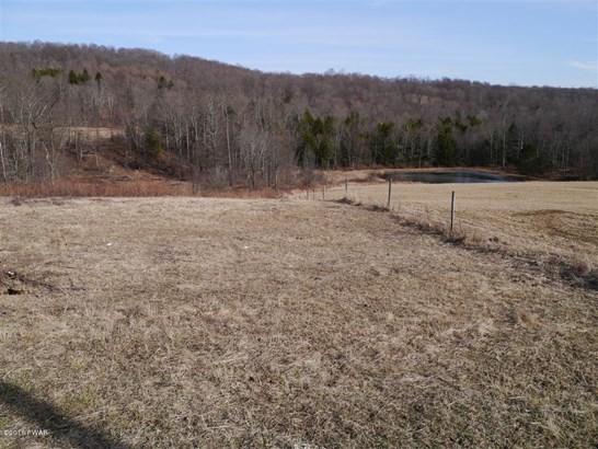 Land - Equinunk, PA (photo 3)