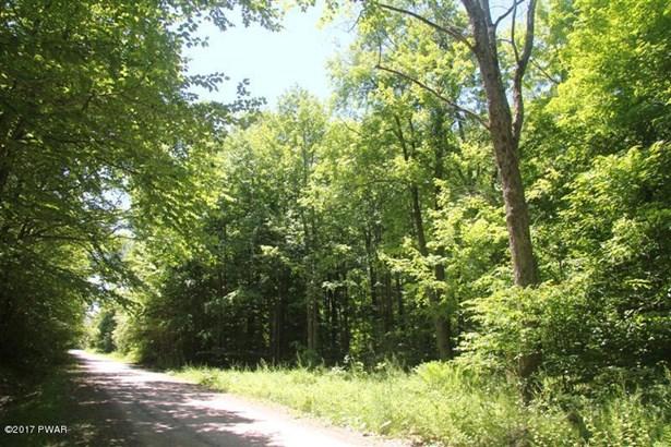 Raw Land - Equinunk, PA (photo 1)
