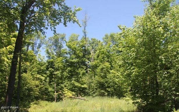 Raw Land - Equinunk, PA (photo 2)