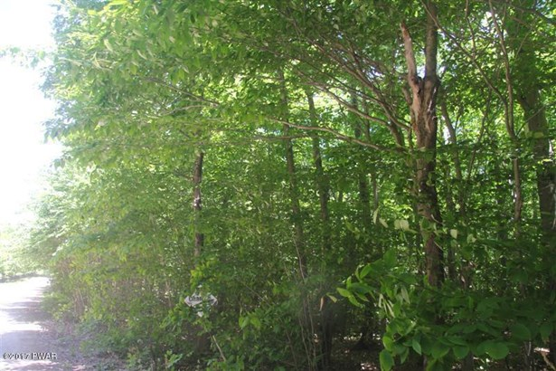 Raw Land - Equinunk, PA (photo 3)