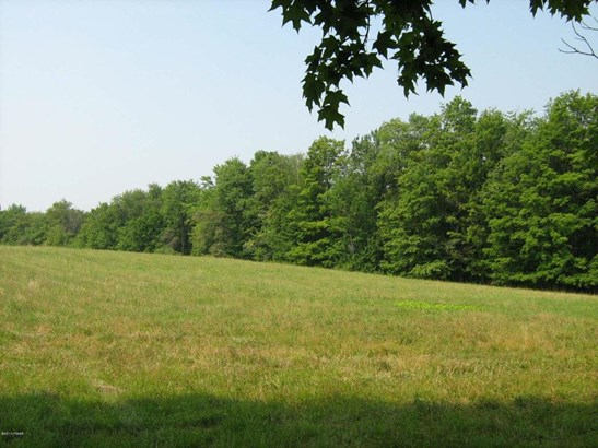 Land w/Buildings,Raw Land - Pleasant Mount, PA (photo 1)