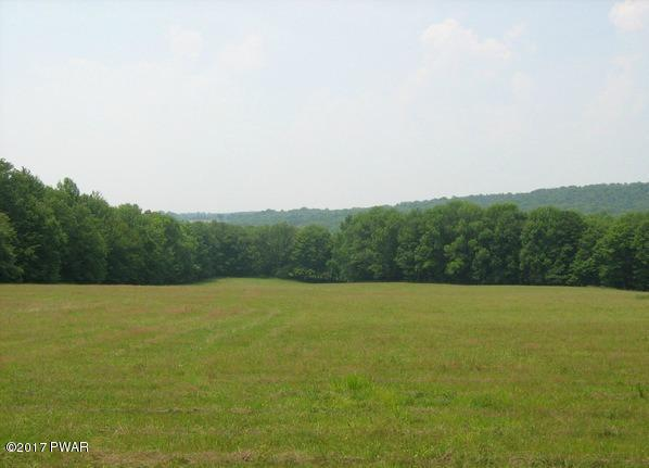 Land w/Buildings,Raw Land - Pleasant Mount, PA (photo 5)