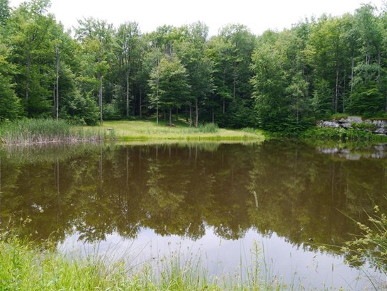 Improved Lot,Land w/Buildings - Honesdale, PA (photo 2)