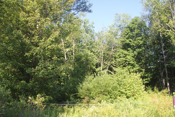 Raw Land - Covington Twp, PA (photo 1)