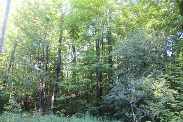 Raw Land - Covington Twp, PA (photo 4)