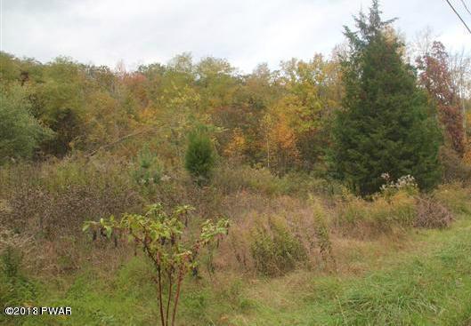 Raw Land - Marshalls Creek, PA (photo 2)