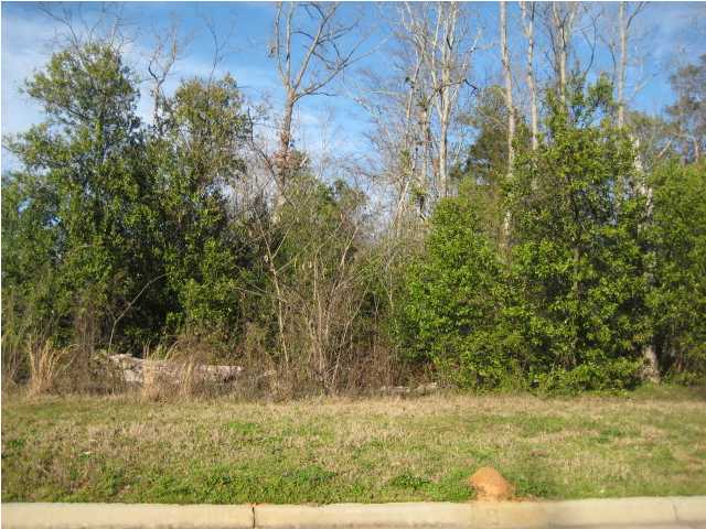 Residential Lot - Millbrook, AL (photo 1)