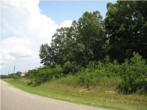 Residential Lot - Millbrook, AL (photo 4)