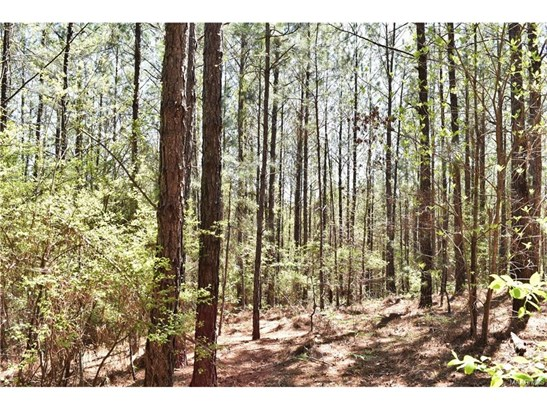 Residential Lot - Wetumpka, AL (photo 4)