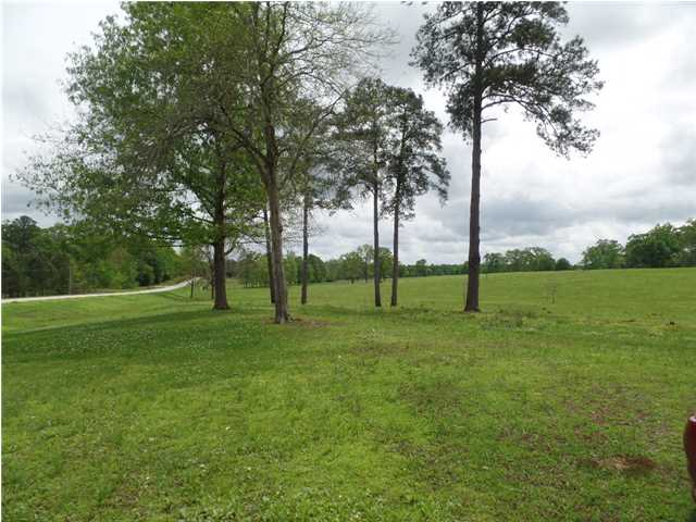 Residential Lot - Mathews, AL (photo 1)