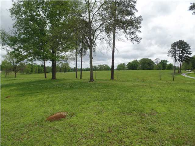 Residential Lot - Mathews, AL (photo 2)