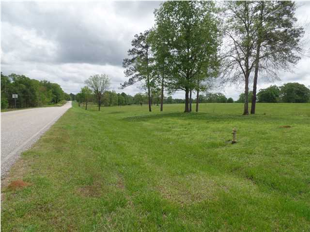 Residential Lot - Mathews, AL (photo 3)