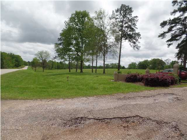 Residential Lot - Mathews, AL (photo 4)