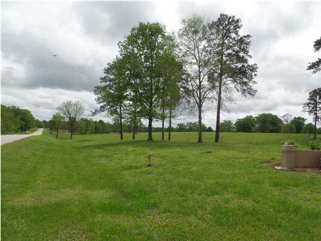 Residential Lot - Mathews, AL (photo 5)