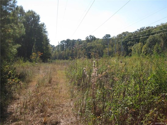 Acreage - Montgomery, AL (photo 5)