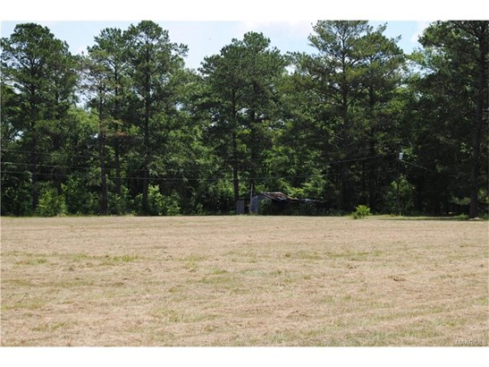 Residential Lot - Pike Road, AL (photo 2)