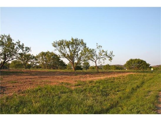 Single Lot - Kingsland, TX (photo 2)