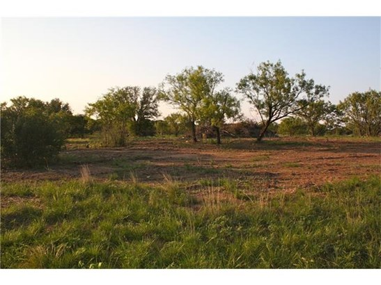 Single Lot - Kingsland, TX (photo 4)