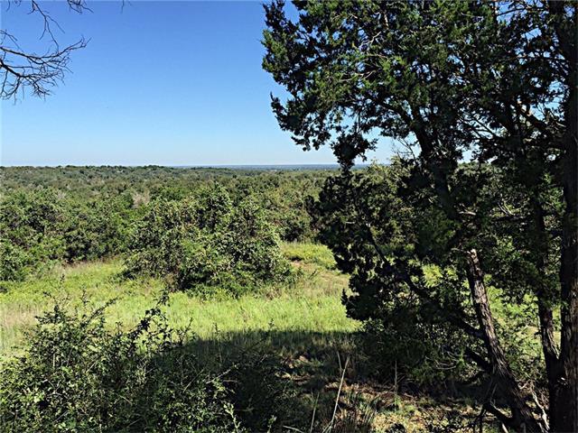 Single Lot - Bastrop, TX (photo 5)