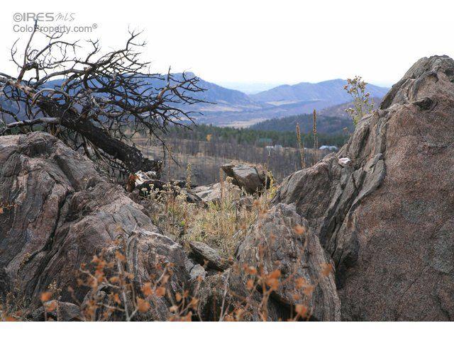 0 Davis Ranch Road, Bellvue, CO - USA (photo 4)