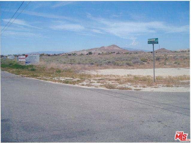 Lots and Land - Rosamond, CA (photo 3)