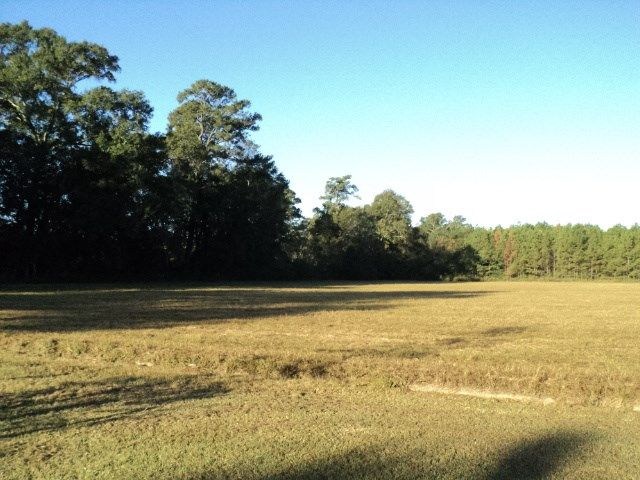 42 Acres Durbin Rd, Independence, LA - USA (photo 2)
