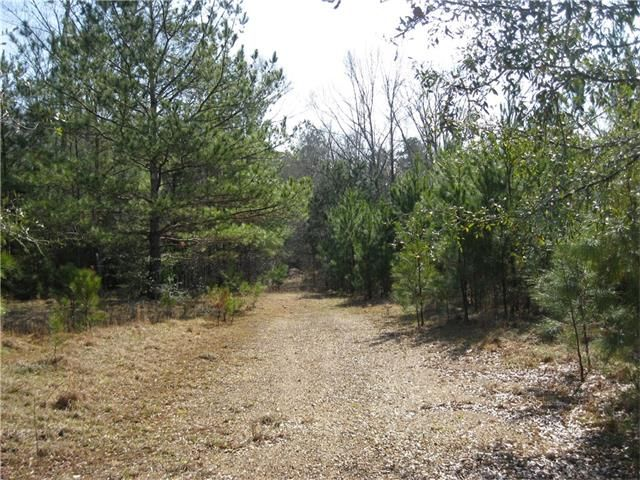 29471 Frank Kennedy Rd, Angie, LA - USA (photo 3)