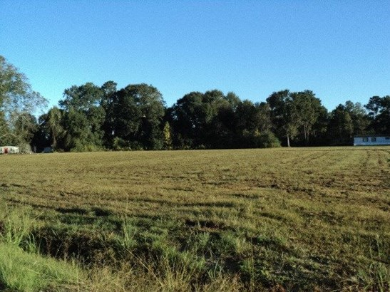 51 Acres N Mashon Rd, Independence, LA - USA (photo 1)