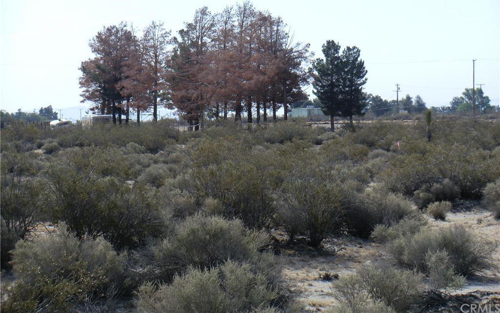 Amarillo Rd, El Mirage, CA - USA (photo 1)