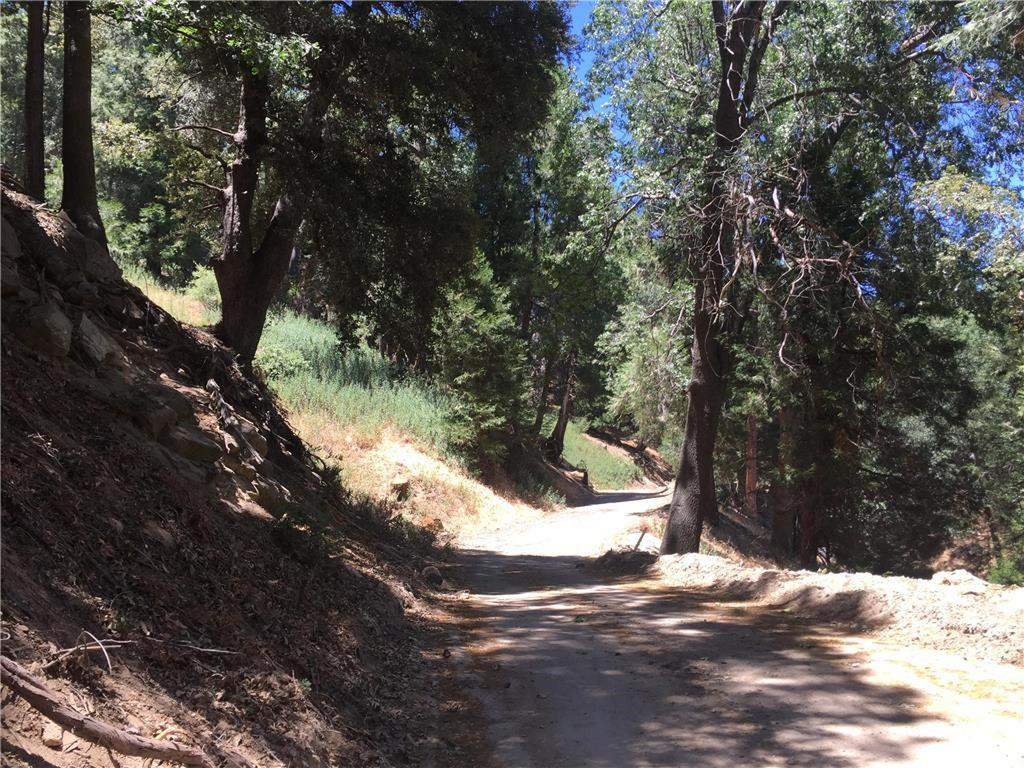 Reservoir Road, Cedarpines Park, CA - USA (photo 2)