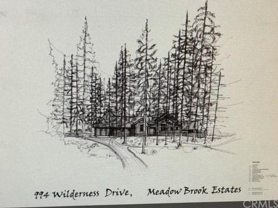 994 Wilderness Drive, Big Bear, CA - USA (photo 1)