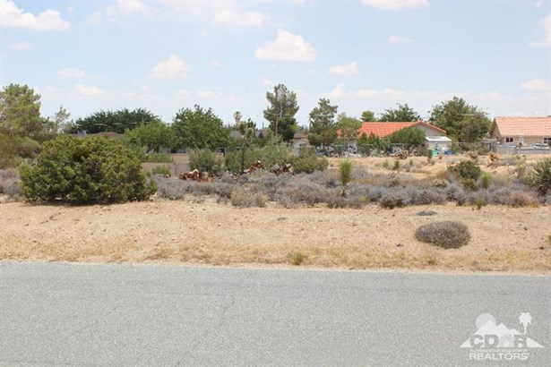 Lots and Land - Yucca Valley, CA (photo 1)