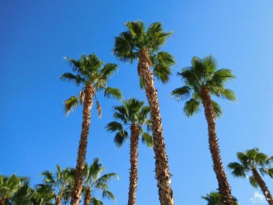 0 Larrea And Two Mile Road Avenue, 29 Palms, CA - USA (photo 5)