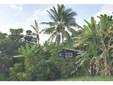 84-4979 Hawaii Belt Rd, Honaunau, HI - USA (photo 1)