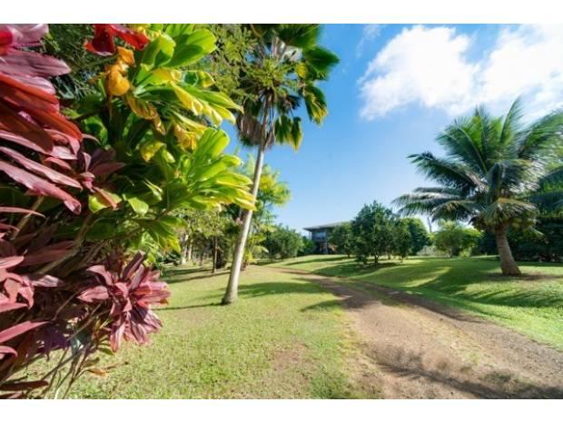4911-c Wailapa Rd C, Kilauea, HI - USA (photo 1)