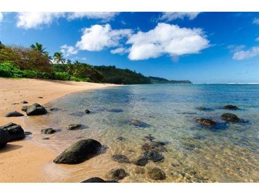 5-756-k Kuhio Hwy, Kilauea, HI - USA (photo 1)