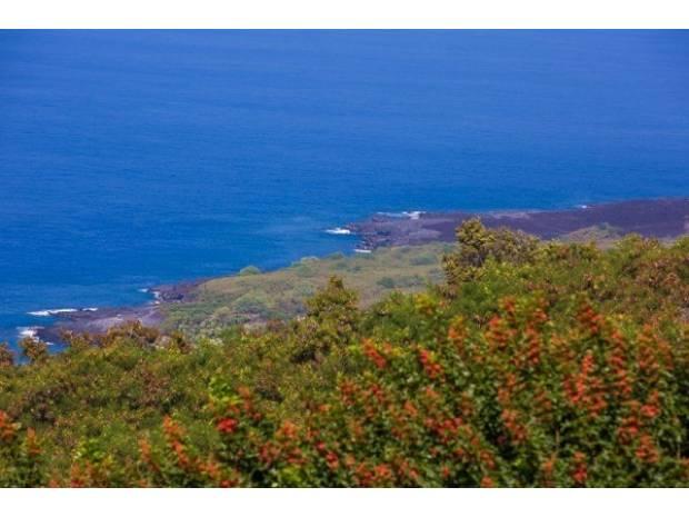 Kona Sea Ranch, Captain Cook, HI - USA (photo 4)
