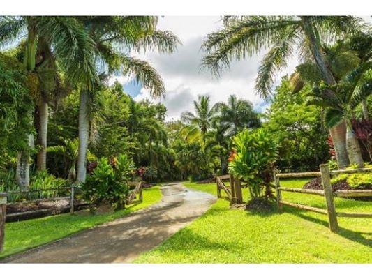 2727 Kauapea Rd. A, Kilauea, HI - USA (photo 3)