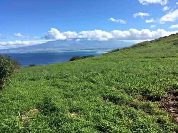 Kahekili Hwy, Wailuku, HI - USA (photo 3)