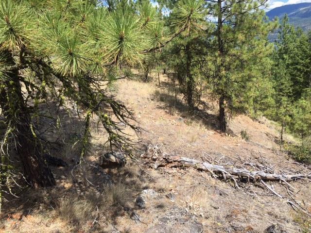 1750 Inchelium Hwy, Inchelium, WA - USA (photo 5)
