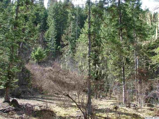 Tbd Lot 13b Indian Creek Rd, Orofino, ID - USA (photo 3)