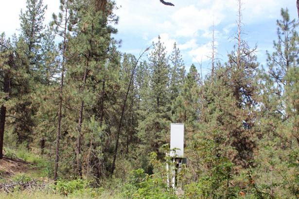 Xxx Tipton Road, Kettle Falls, WA - USA (photo 5)