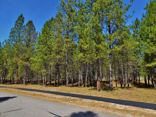 Lot 58 Turah Meadows, Clinton, MT - USA (photo 1)