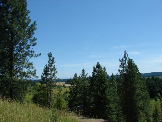 Lot 5 Bland Road, Lenore, ID - USA (photo 2)