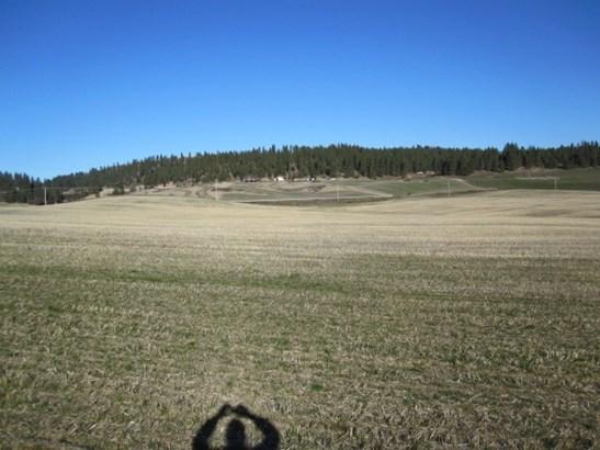 9900 Blk E Peone Landing Ln, Mead, WA - USA (photo 1)