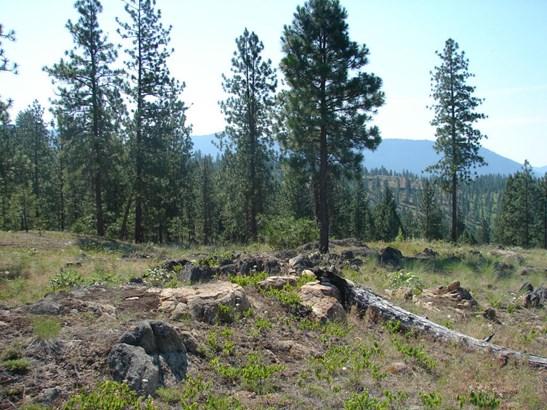Land and views (photo 5)